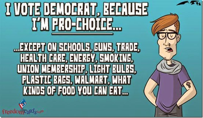 Democrat Voter