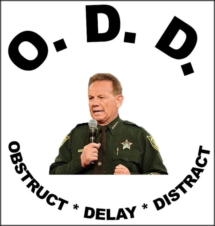 odd-SI