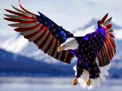 US  Red, White Blue Eagle