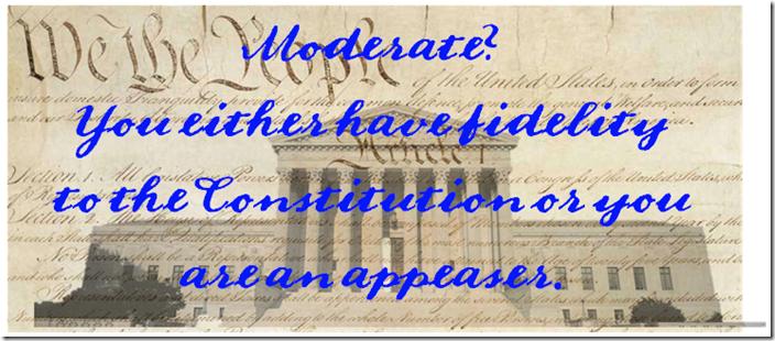 constitution-appeaser