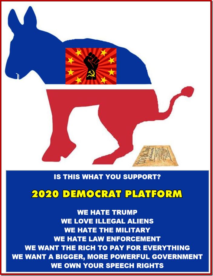 2020-DEMOCRATI PLATFORM