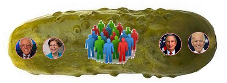 democrat-pickle
